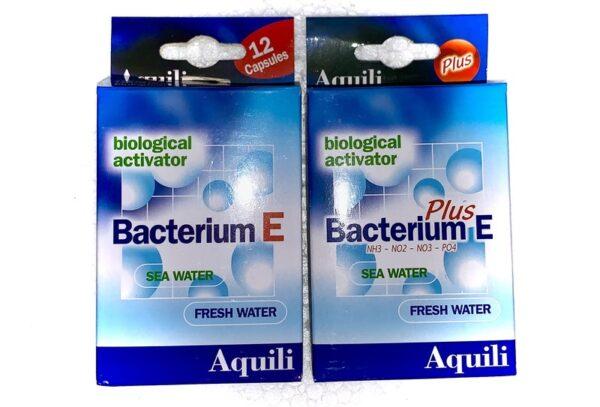 batteri aquili bacterium e e plus